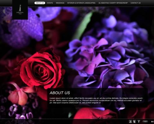 ali bakhtiar designs 495x400 - Design Portfolio