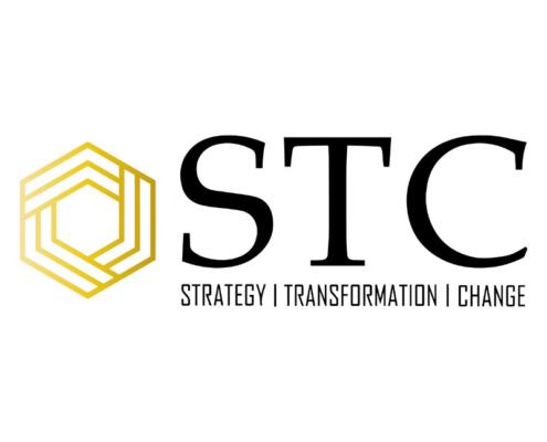 STC Logo 495x400 - Fluid Layout Responsive Design